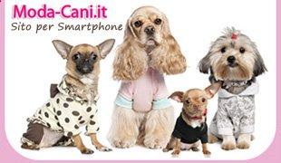 felpa adidas per cani